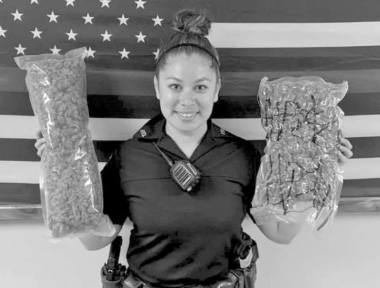 CPD makes marijuana arrest