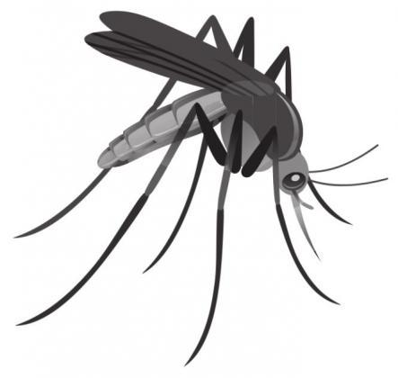 June 21-27 is Mosquito Awareness Week