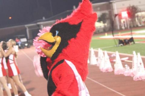 Cardinals control the air, ground in district shootout