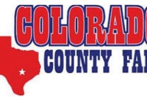 Colorado County Fair tag-ins