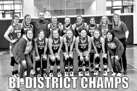 Lady cats are Bi-DIstrict Champs
