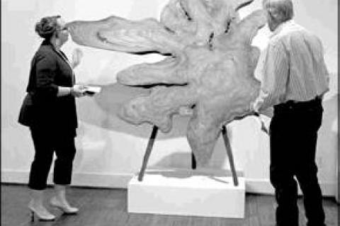 Potter's artwork on display at LOAC
