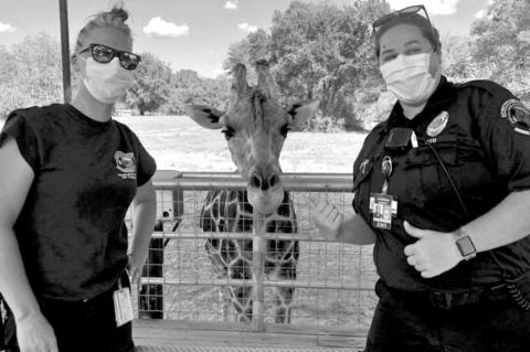 First responders hang out with Hatari