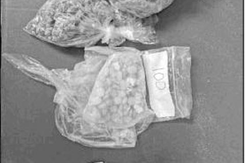 Arrest for pills, pot in Swiss Alp area